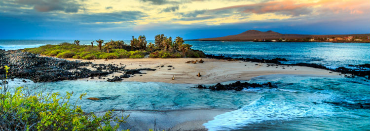 A beach on the Galapagos Islands