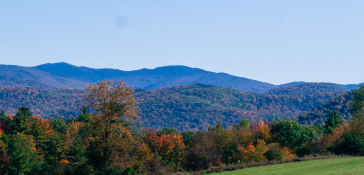 Green Mountains of Vermont.jpg