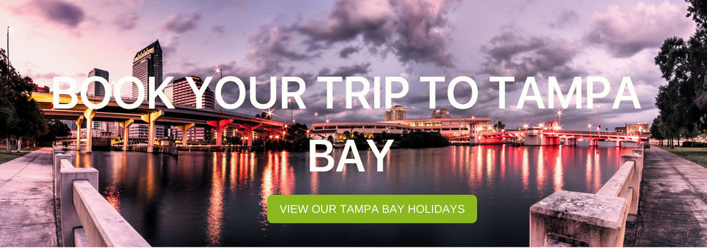 "A banner that says ""Book Your Trip to Tampa Bay"""