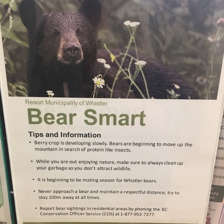 A sign about being Bear Smart