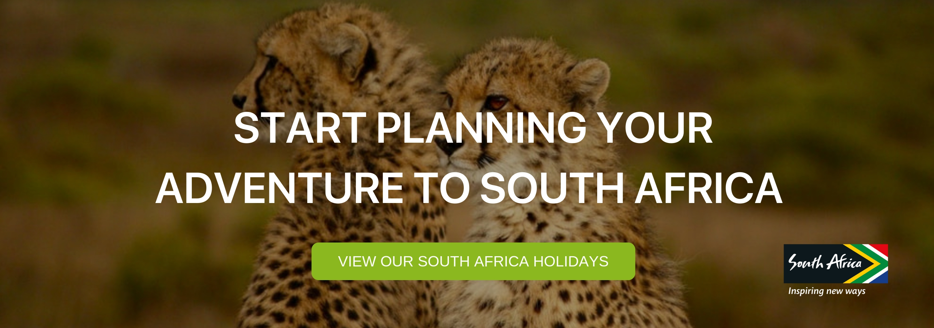"A banner that says ""Start Planning your Adventure to South Africa"""