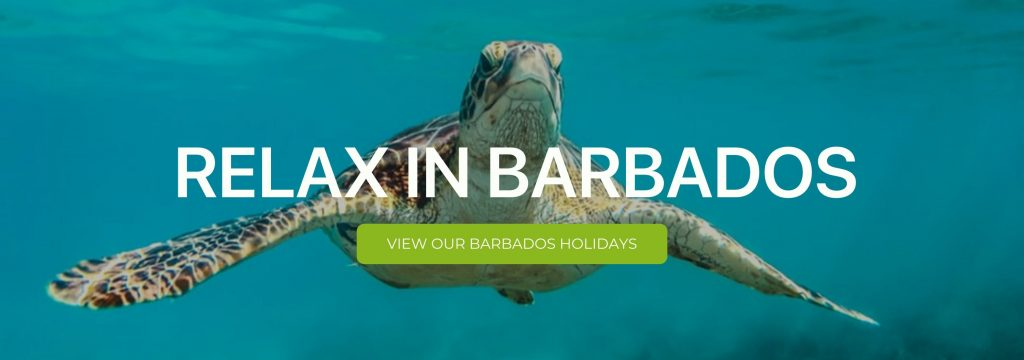 "A banner that says ""Relax in Barbados"""